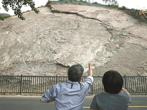 专家初步断定,延庆地质公园里的恐龙足迹归属于蜥脚类、覆盾甲龙类、兽脚类、鸟脚类。