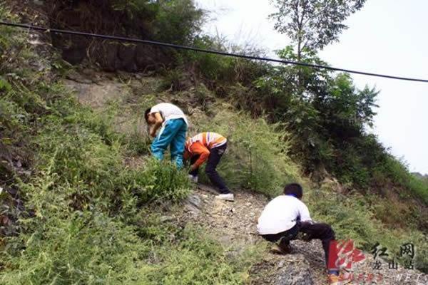 """""""化石山""""名不虚传,民安街道竹园村的村级公路沿线山丘上到处都有化石"""