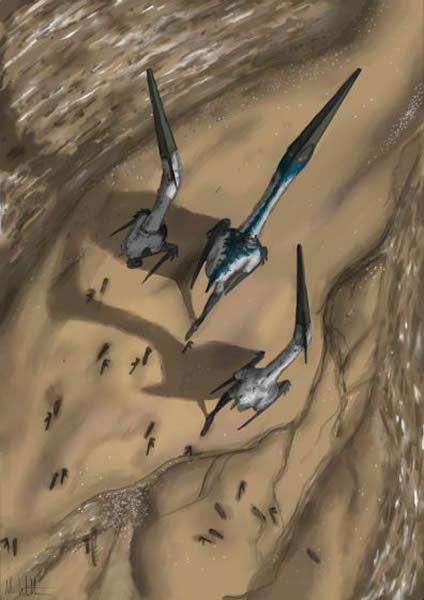 翼龙类在水畔行走留下足迹(绘图Mark Witton)