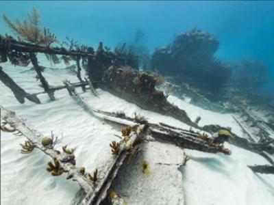谷歌海景展现百慕大失事沉船残骸
