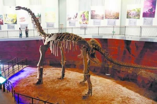 汝阳黄河巨龙化石模型