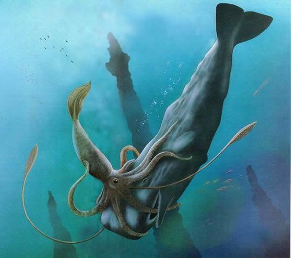 一种聪明的远古乌贼会重新排列猎物的脊椎骨使之成为 艺术品
