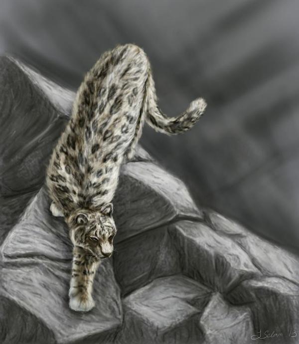布氏豹Panthera blytheae的复原图(Julie Selan供图)