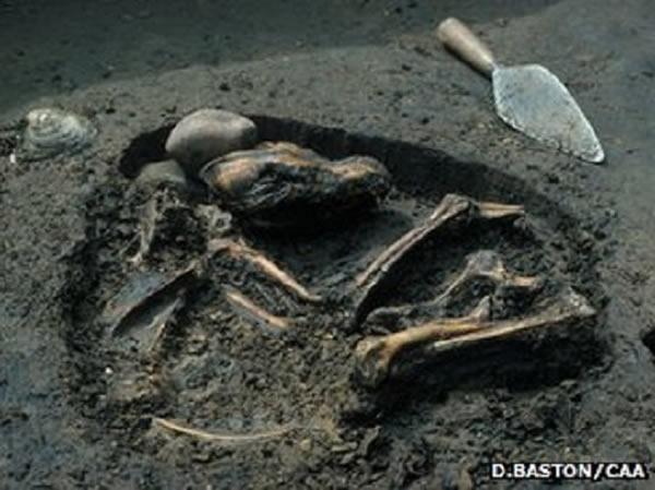 最早的够起源之谜:DNA研究发现最古老的驯化狗来自欧洲