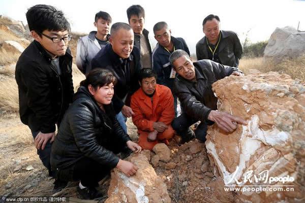 安徽淮北发现大型脊椎动物化石