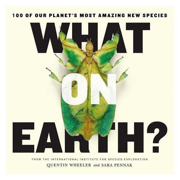 1.25亿年前迪拉丽花入选《地球新物种百杰》