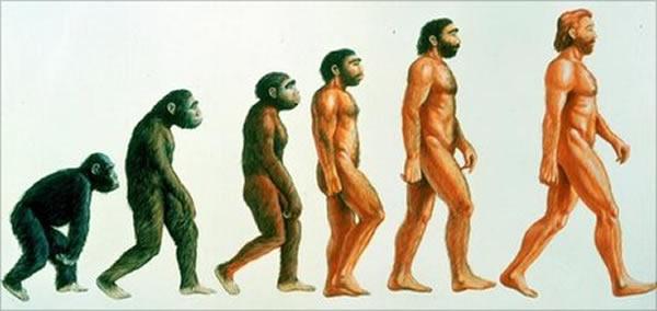 人类进化影响了分娩