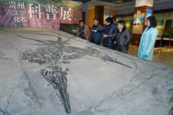 贵州古生物化石科普展在贵州民族文化宫正式开展