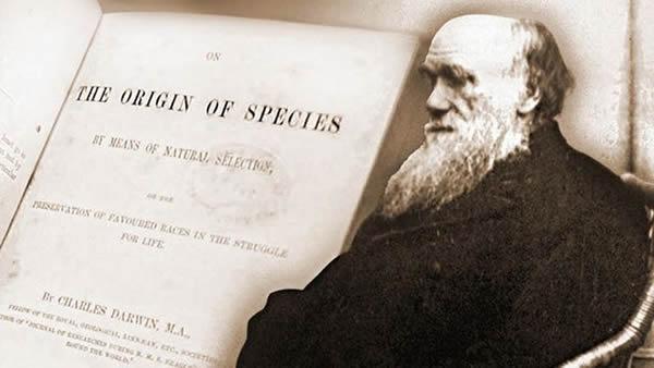 达尔文的进化论认为人类也是物种进化的结果,自然选择是普适性的定律