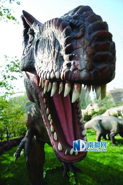 在电影《侏罗纪公园》中,恐龙津津有味地咀嚼桉树叶的一幕被专家质疑.他们认为,恐龙牙齿表面没有凹槽,所以不可能像哺乳动物那样咀嚼。