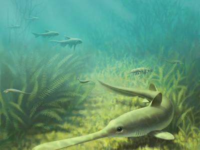 云南曲靖志留纪发现真盔甲鱼类一新属、新种-