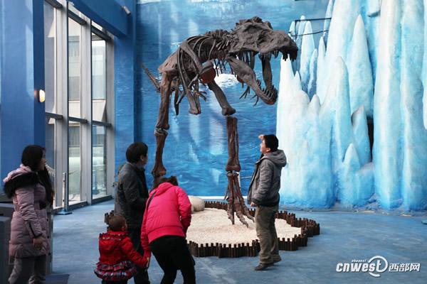 极地馆内的恐龙龙骨架展示