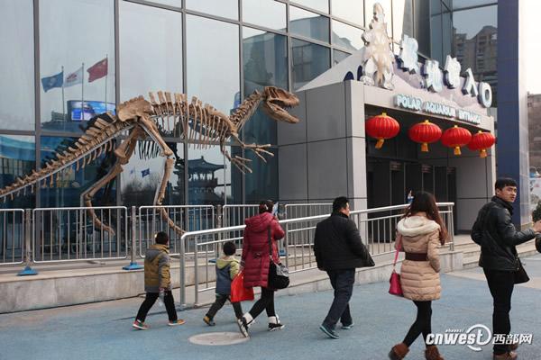 曲江极地馆自贡恐龙化石展将持续到6月2日