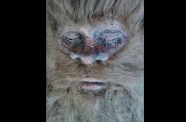 New Bigfoot Claim, Old Bigfoot Hoaxer