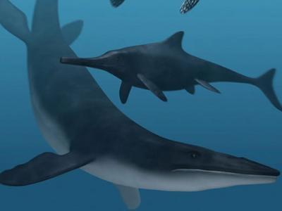 Ancient Sea Monsters Were Black