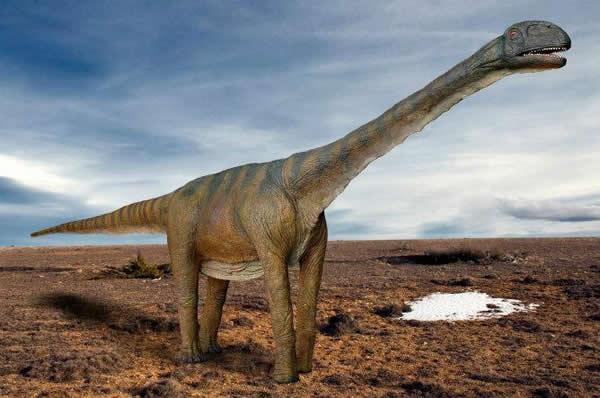 西班牙发现恐龙化石跟蛤蜊一起