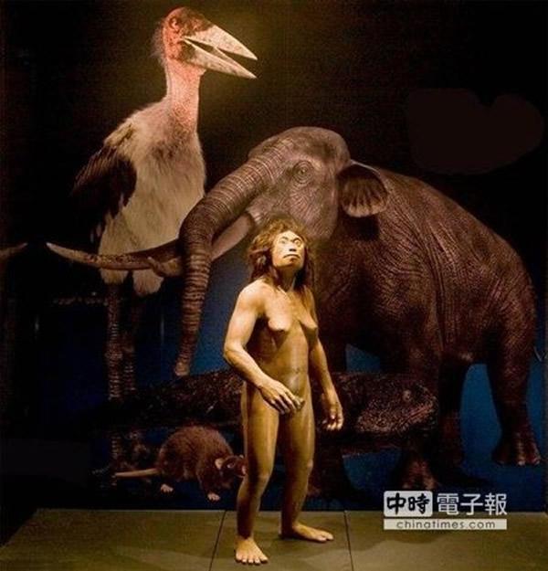 霍比特人是独特人类物种而不是畸形现代人