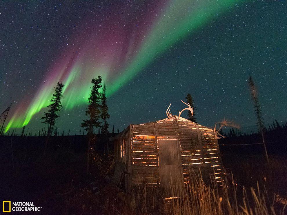 加拿大育空地区的北极光