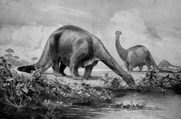 十大早期描述的奇特恐龙