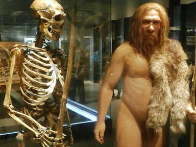 Neanderthals Faced Extinction Before Humans Appeared