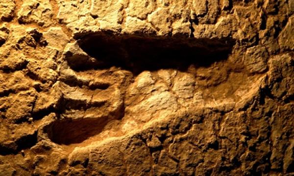 蒙哥国家公园内的古人类足迹化石