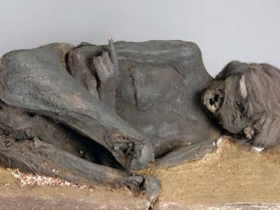 Mummy Murder Solved: Incan Woman's Head Smashed