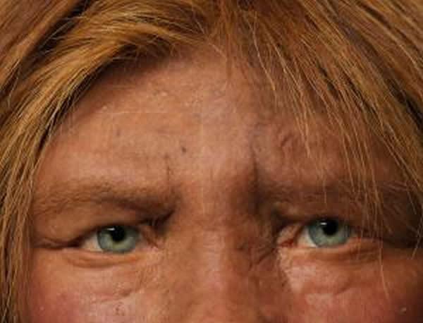 人类与尼安德特人杂交导致人类皮肤白皙生育性低