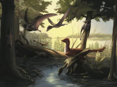 Jurassic Fossil Find Has Feathered Dinos, Airborne Mammals