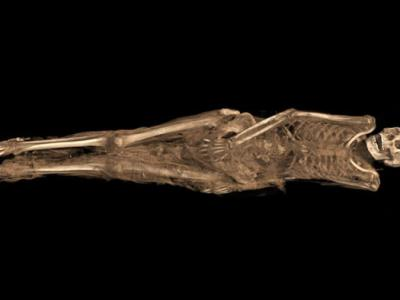 1,300-Year-Old Egyptian Mummy Had Biblical Tattoo