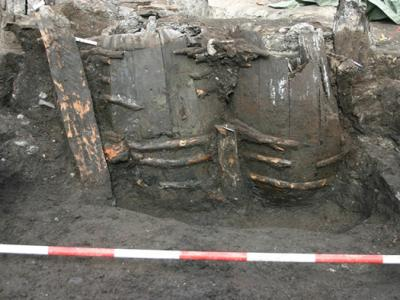 Medieval Poop Found: Still Stinks