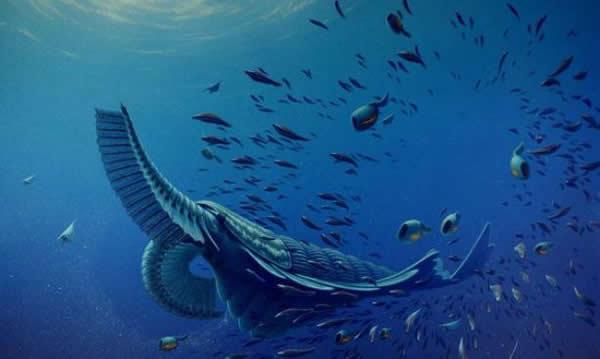 寒武纪生命大爆发导致出现许多奇怪的海洋生物