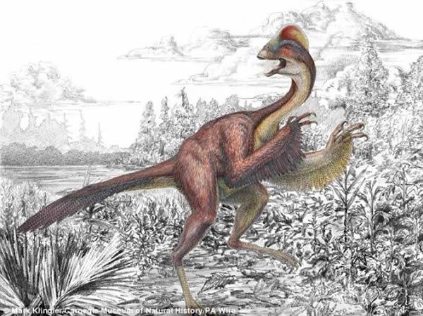 """6600万年前漫步在北美大陆的""""地狱鸡"""""""