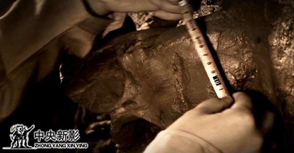 CCTV纪录片《九龙之死》获中央新影集团年度奖