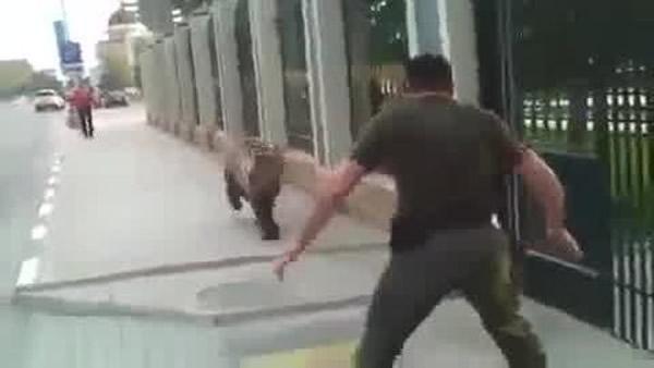 战斗民族:俄罗斯人街头徒手擒抱棕熊