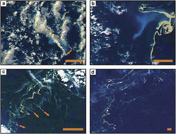 新研究预测海洋浮岩漂流方向