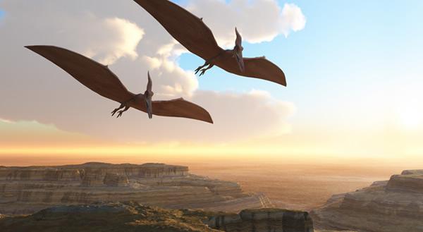 新发现的翼手龙(Kryptodrakon progenitor)复原图