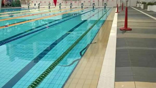 新加坡大巴窑一个泳池惊现大蟒蛇