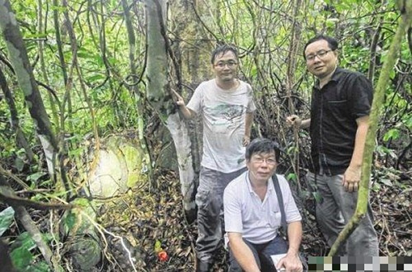 (左至右)吴安全、林志强、洪毅瀚确认古墓属于梁壬癸。