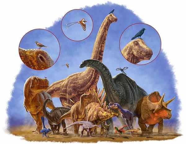 巨大的恐龙走向灭亡,而最终变为鸟类的小家伙却幸存下来。
