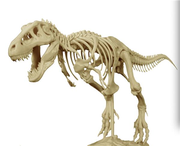 3D打猎奇系列电影印霸王龙骨架