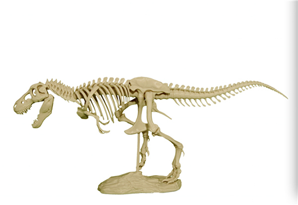 3D打印霸王龙骨架