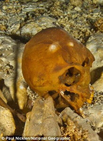 """这是潜水员在墨西哥海底洞穴中发现的""""纳亚""""头骨。科学家通过分析头骨和骨骼DNA,发现1.3万年前亚洲人迁移至美洲,他们穿过一个大陆桥抵达美洲。"""