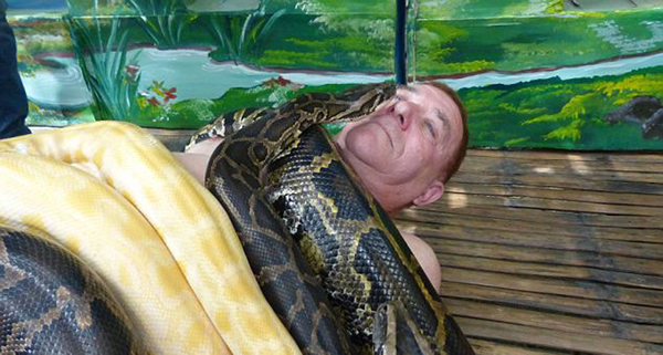 Картинки по запросу нападение змей на человека