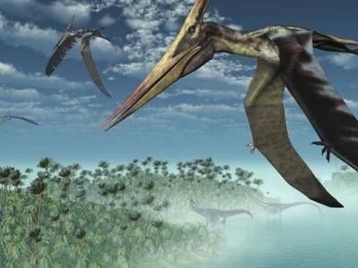 Pterosaurs Were Super-Social Flying Reptiles