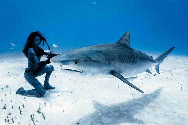 """英国模特在巴哈马与世界上最危险的鲨鱼物种""""虎鲨""""翩翩起舞"""