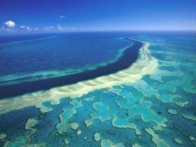联合国警告或将澳洲大堡礁从世界自然遗产降级