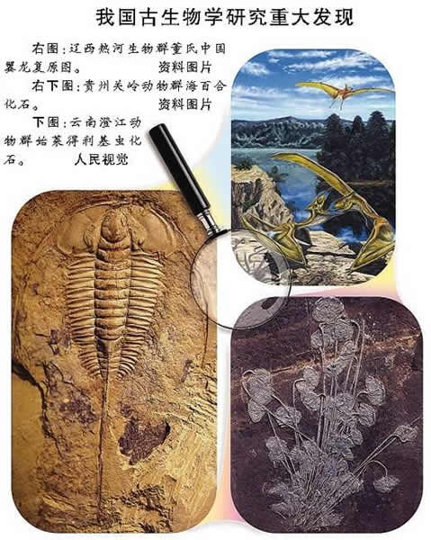 走近小众的古生物学专业