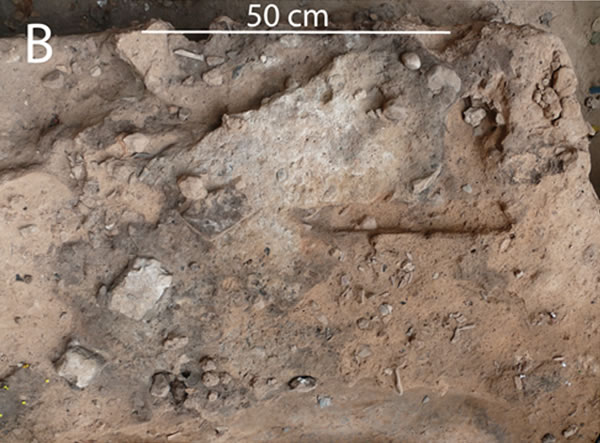 西班牙尼安德特人部落遗址中发现迄今为止人类最古老的粪便