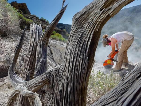 在大阶梯-艾斯卡兰提国家纪念地,丹佛自然科学博物馆的卡萝.拉金用装有钻石刀片的切石锯切开一块砂岩岩板。她的目标:一只年轻鸭嘴龙的骨头。 PHOTOGRAPH B