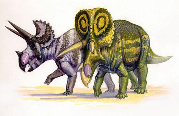 三角龙进化的形态学证据